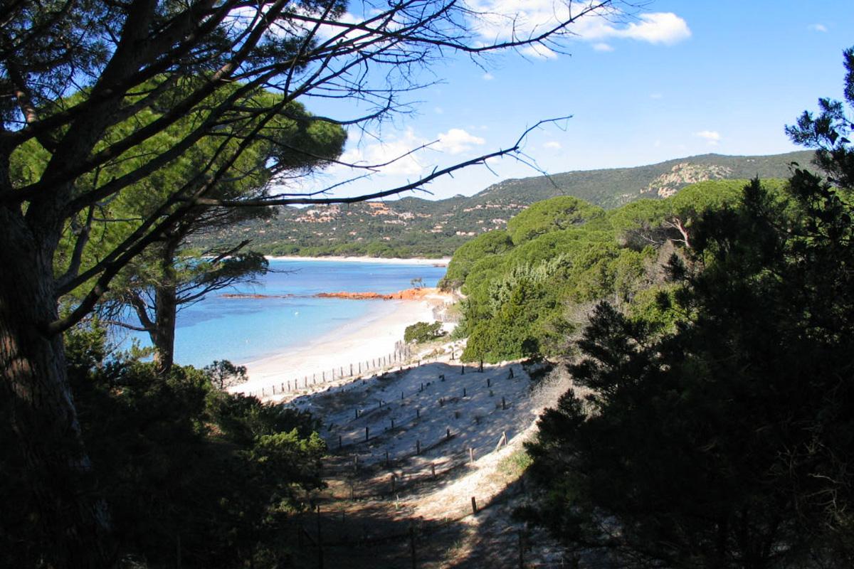 Bergerie Corse plage de Palombaggia - Ref M04-5