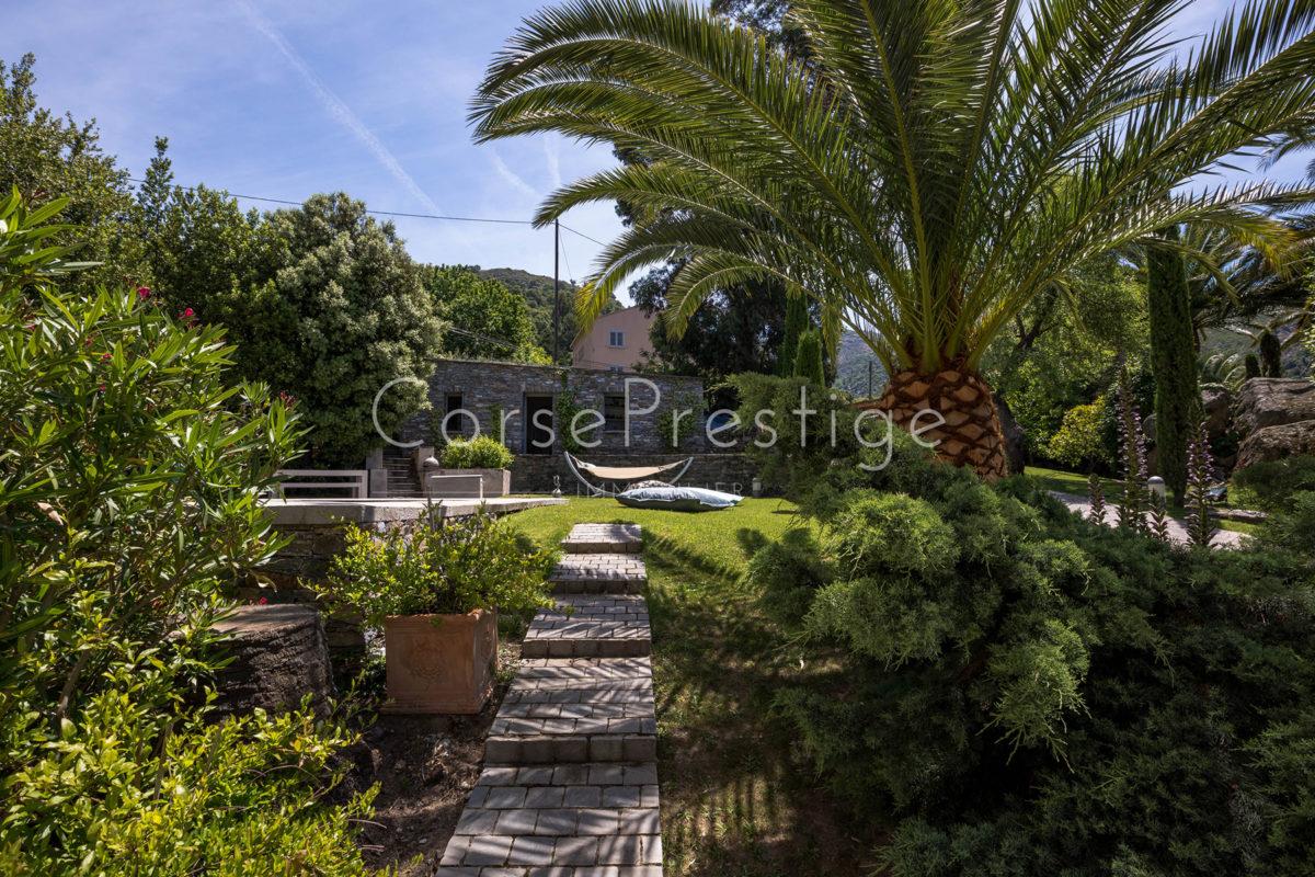 mansion-for-sale-in-corsica-st-florent-ref-n52-5