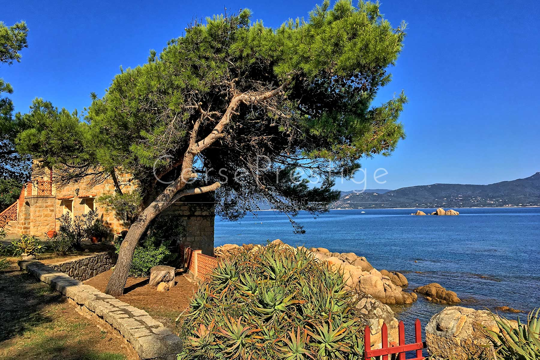 Waterfront property to sell in Corsica - West coast